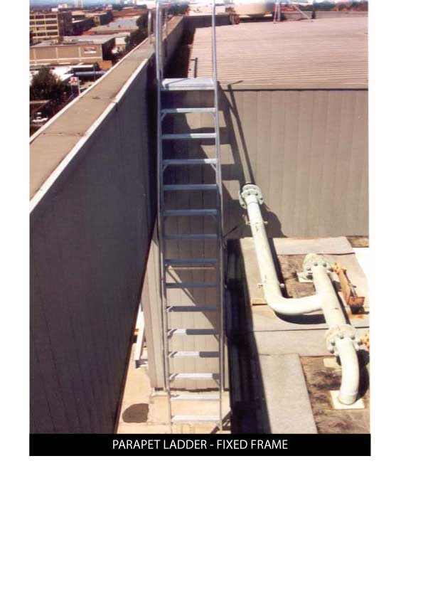 Custom Manufacturing Service - Paraprt Ladder with fixed frame